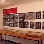 Bildergalerie Die Falken